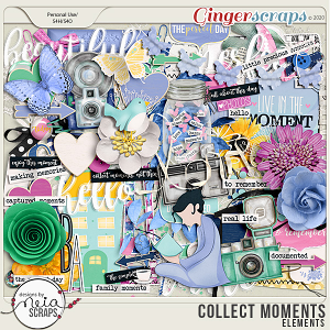 Collect Moments - Elements - by Neia Scraps