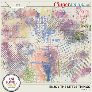 Enjoy The Little Things Overlays by JB Studio